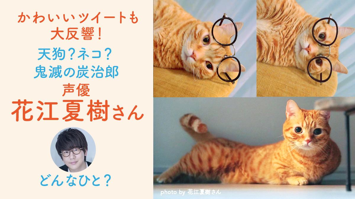 声優の花江夏樹は天狗?いえいえ愛猫家の声優パパ!プロフや愛猫 ...